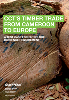 CCT's Timber trade from Cameroon to Europe